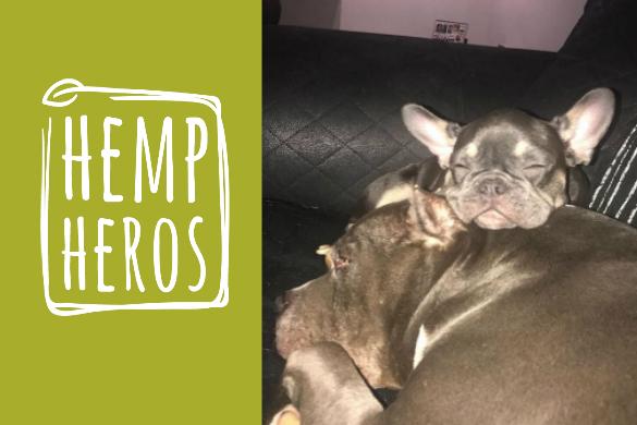 hemp for pets